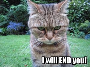 evil_cat_by_emelfi